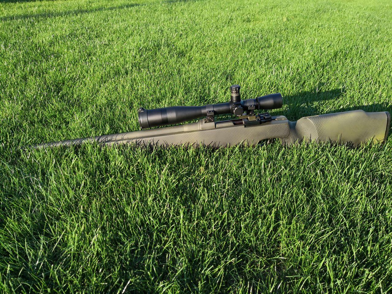 Mauser Tarn