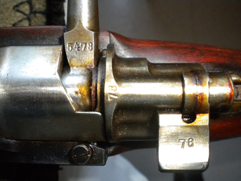DSCN3804