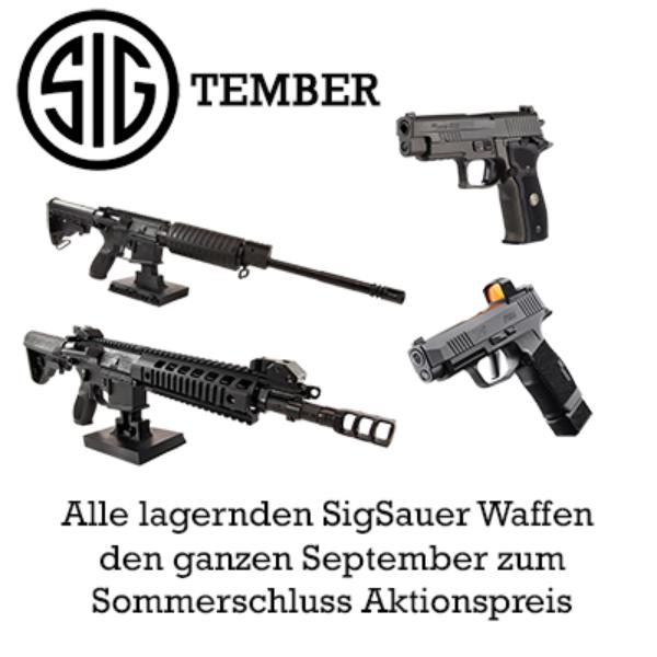 Facebook Sig Tember