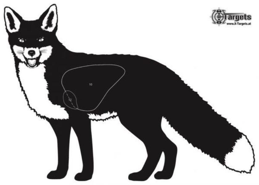 Fuchs 50x70