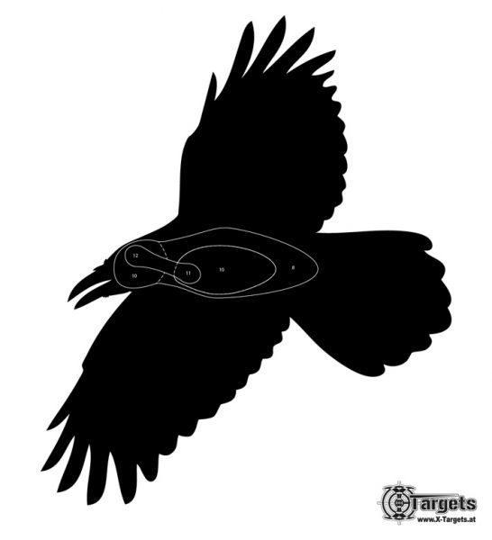 Zielscheibe Krähe