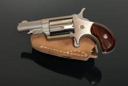 North American Arms NAA 22lr. Mini Rev.